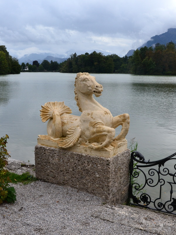 Wasserspferd Leopoldskroner Weiher
