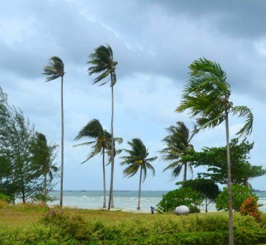 Bintan Bay und das Swiss-Belhotel; nichts für Menschen auf der Suche nach Action