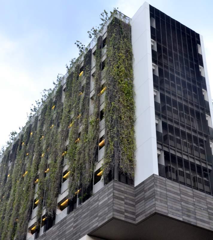Singapur Grünflächen