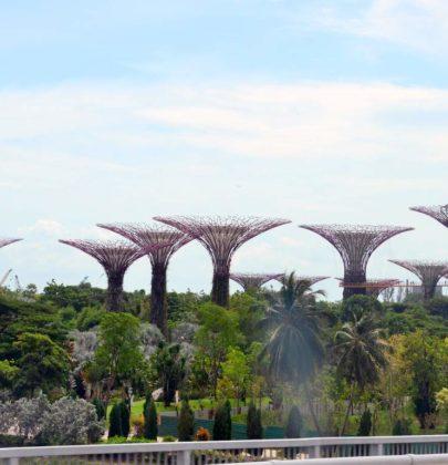 Genussreise nach Singapur