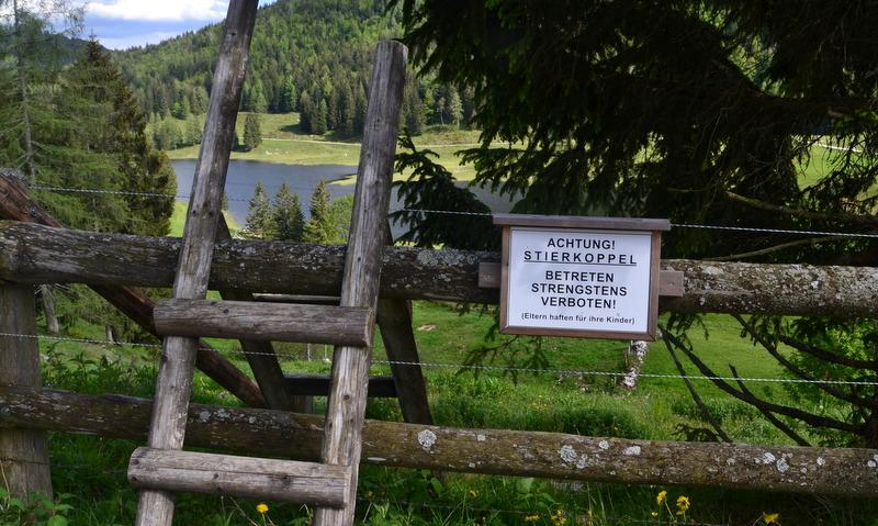 Stiergatter Seewaldsee