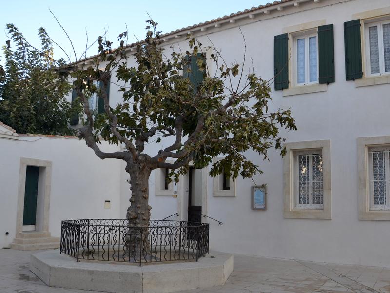 saintes-maries-de-la-mer-kirchenvorplatz
