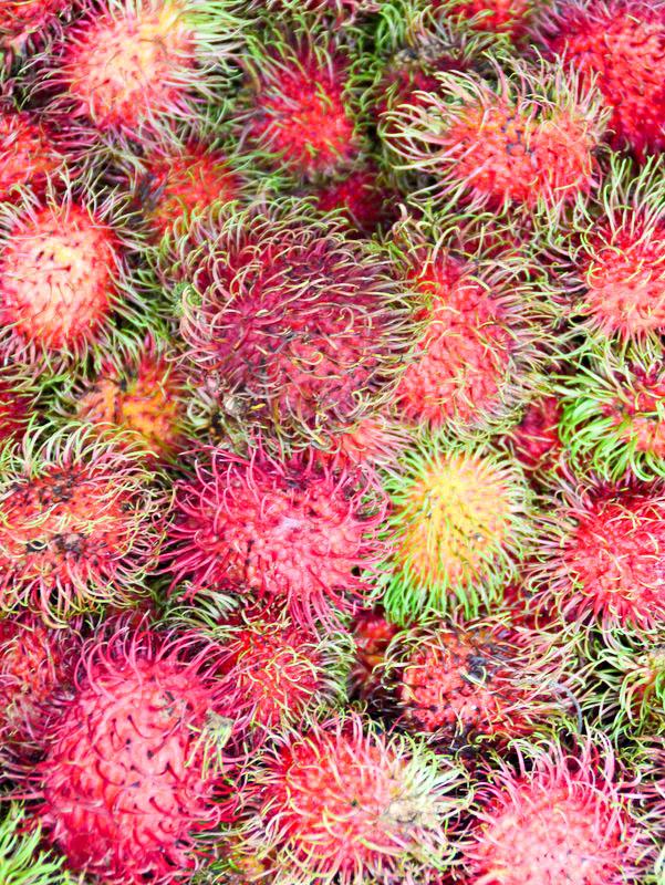 asiatische Frucht