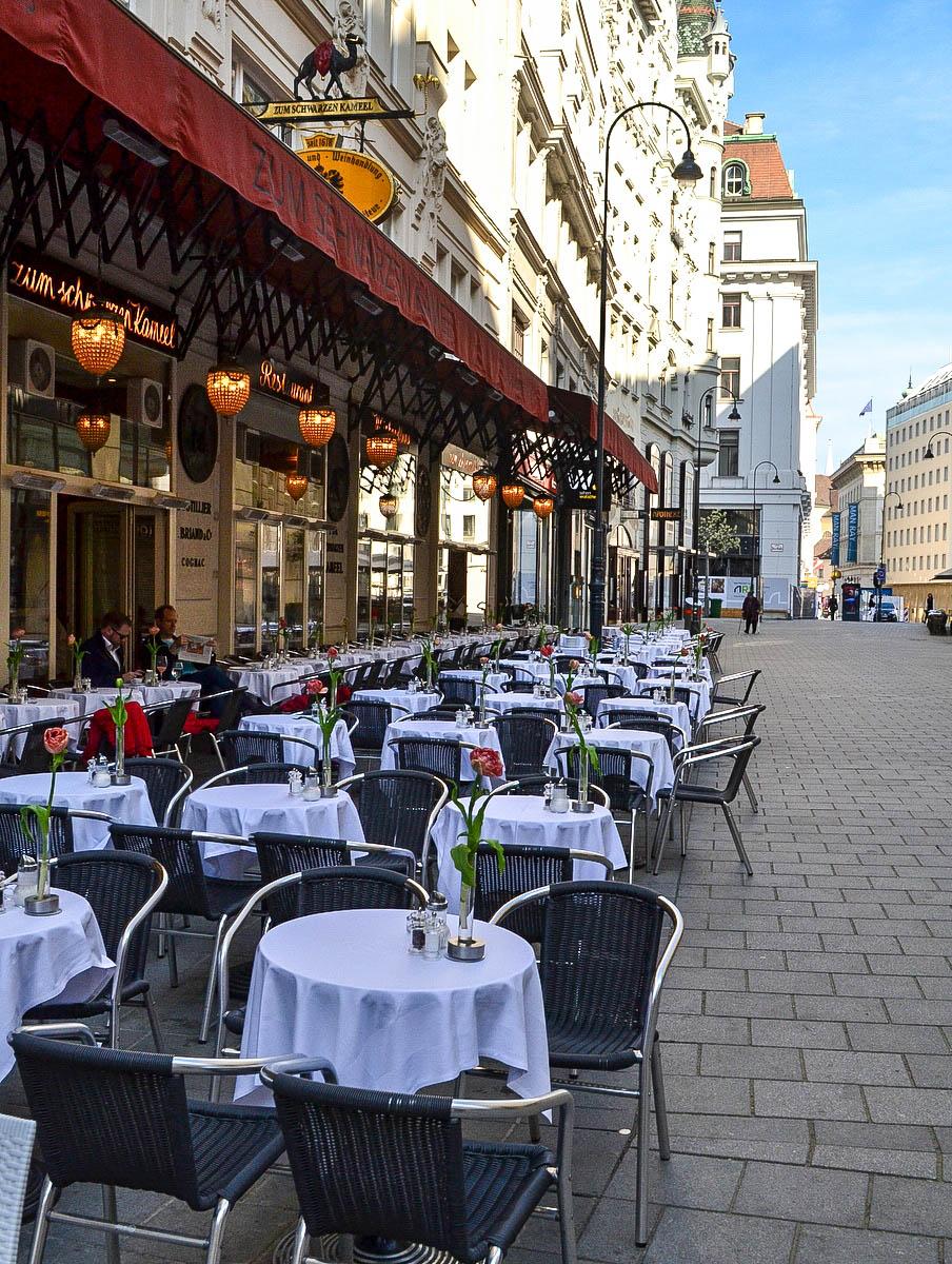 Gastgarten Schwarzes Kameel in Wien