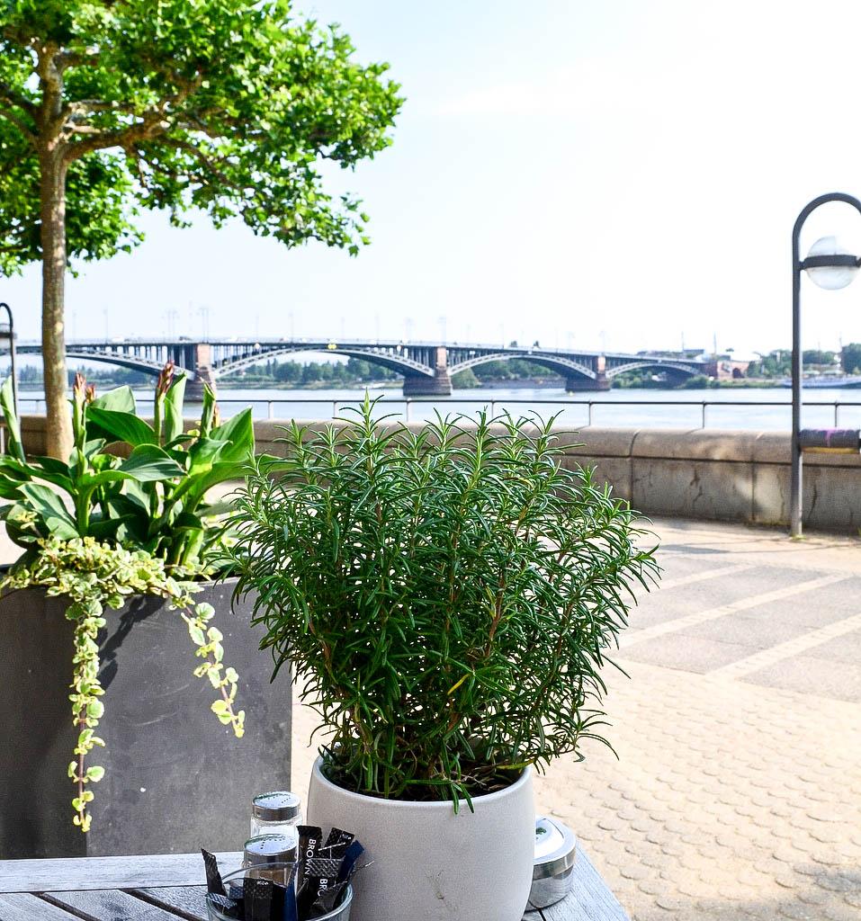 Terrasse im Hotel Hilton