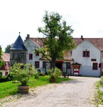 Trinken, wohnen und essen in Rheinhessen