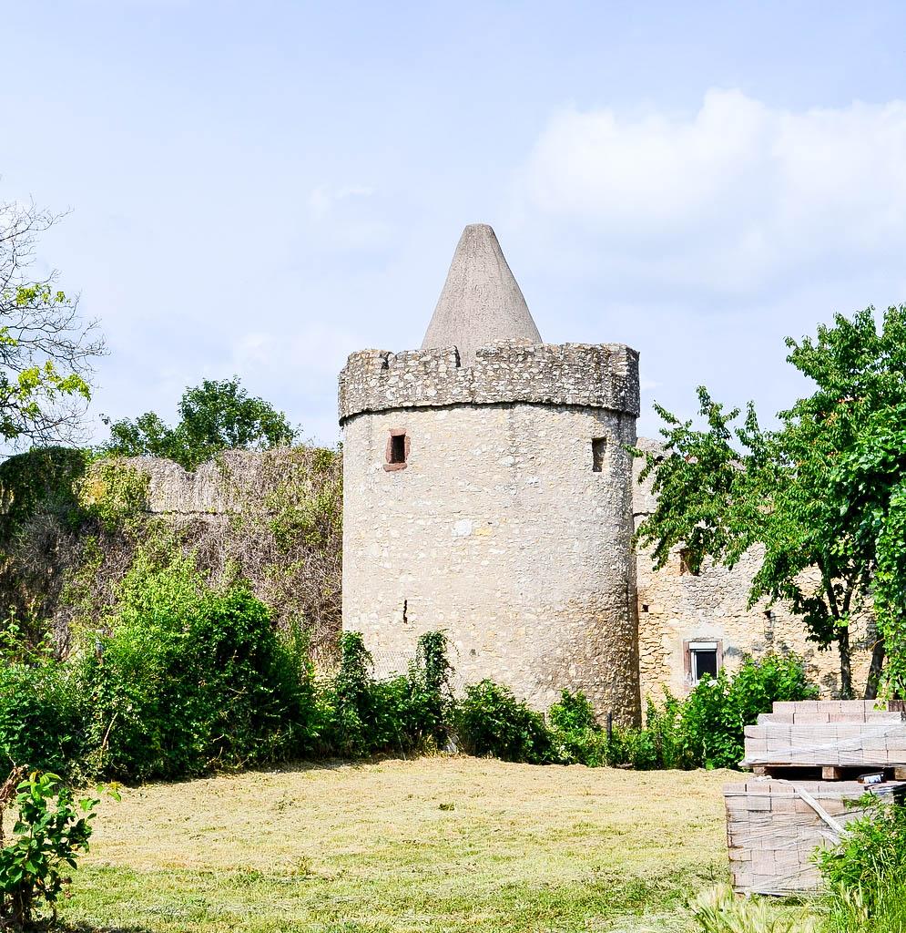 Fleckenmauer in Flörsheim-Dalheim