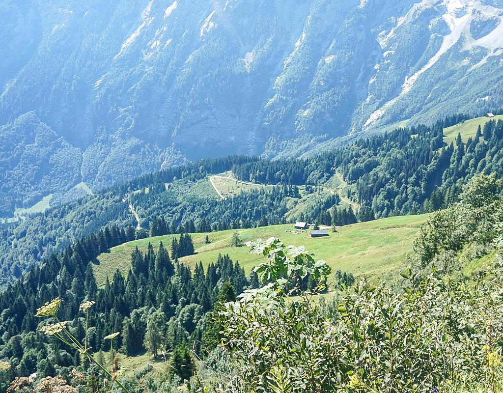 Blick auf Almen im Tennengau
