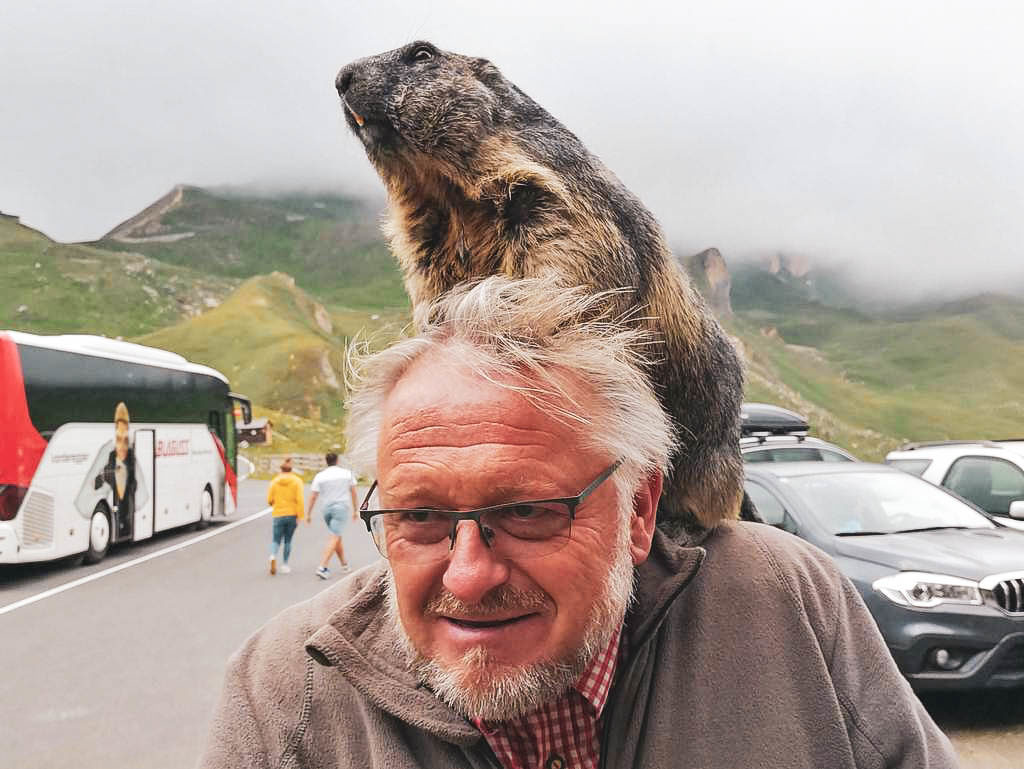 Mankeiwirt Herbert mit Murmeltier