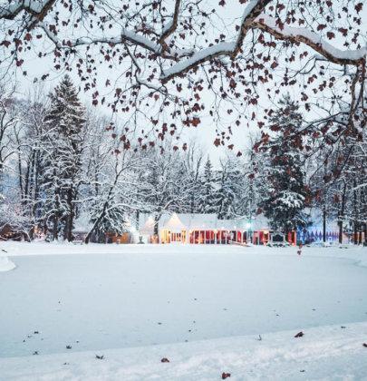Ein Adventswochenende in Salzburg; Zirkus, Eierlikör und Krippe