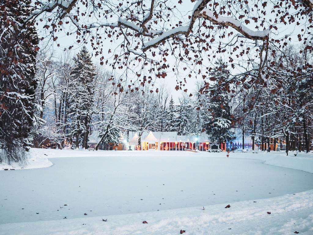 Ein Adventswochenende in Salzburg; Zirkus, Eierlikör und Krippe |