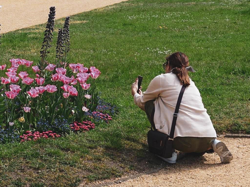 Frau fotografiert Blumen