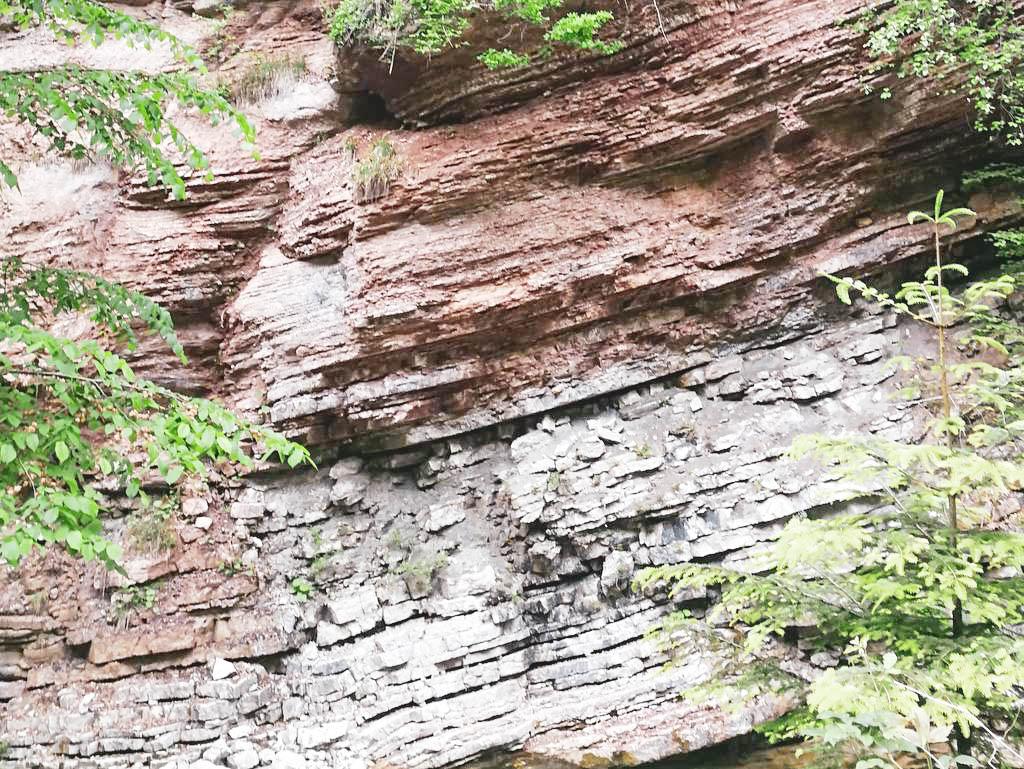 Gesteinsformationen Glasenbachklamm