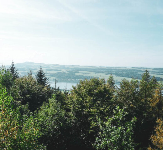 Wandern im Salzburger Seenland; der Buchberg am Mattsee