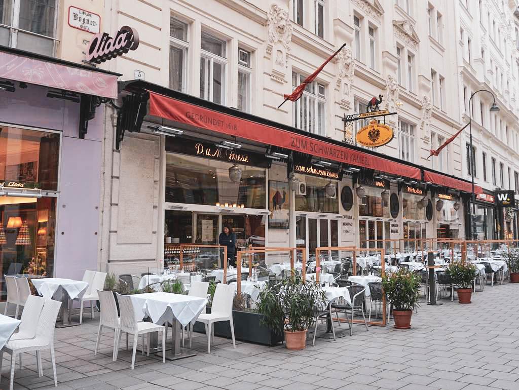 Schwarzes Kaamel Wien